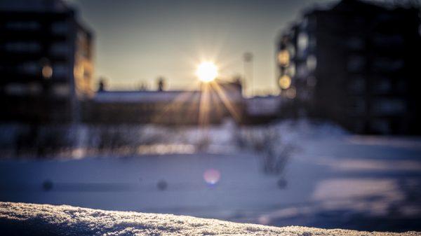 Pihat, katot, putket – talvea tulvillaan?